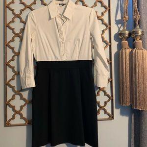 Theory Size 6 Shirtdress